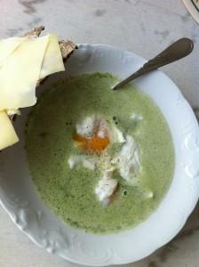 Soppa på mangold